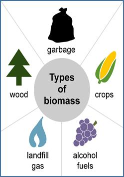 Fig. 3 Biomass for bioenergy