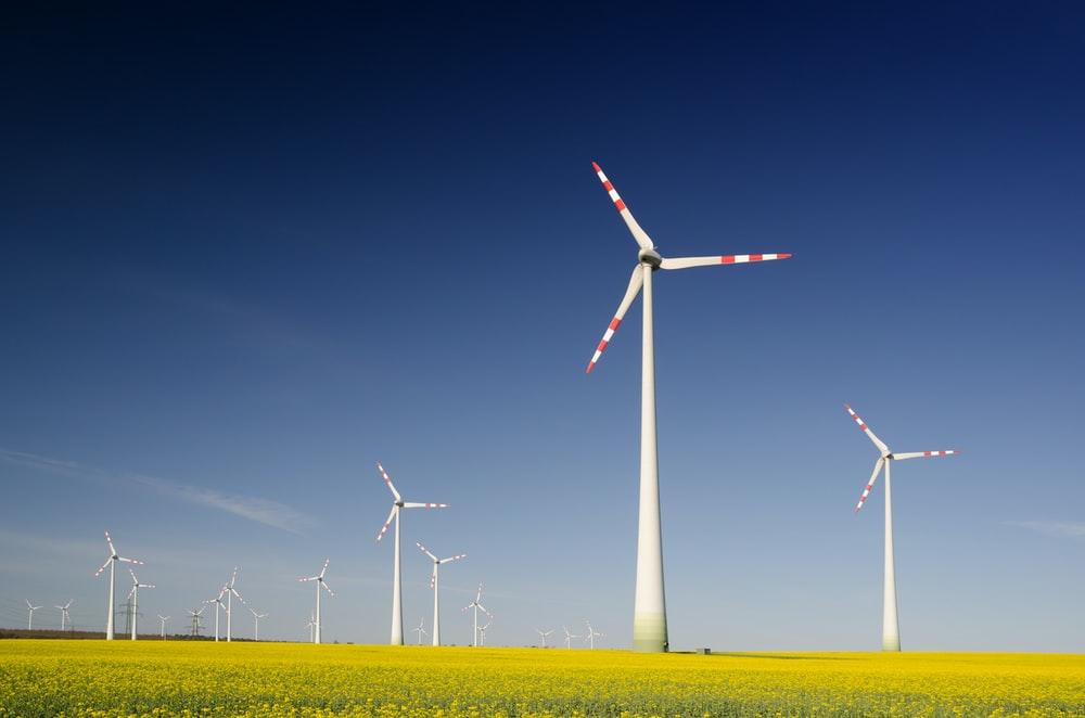 Fig. 2 Wind energy generating farm
